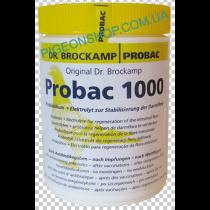 Probac 1000 | Пробіотичний електроліт для голубів